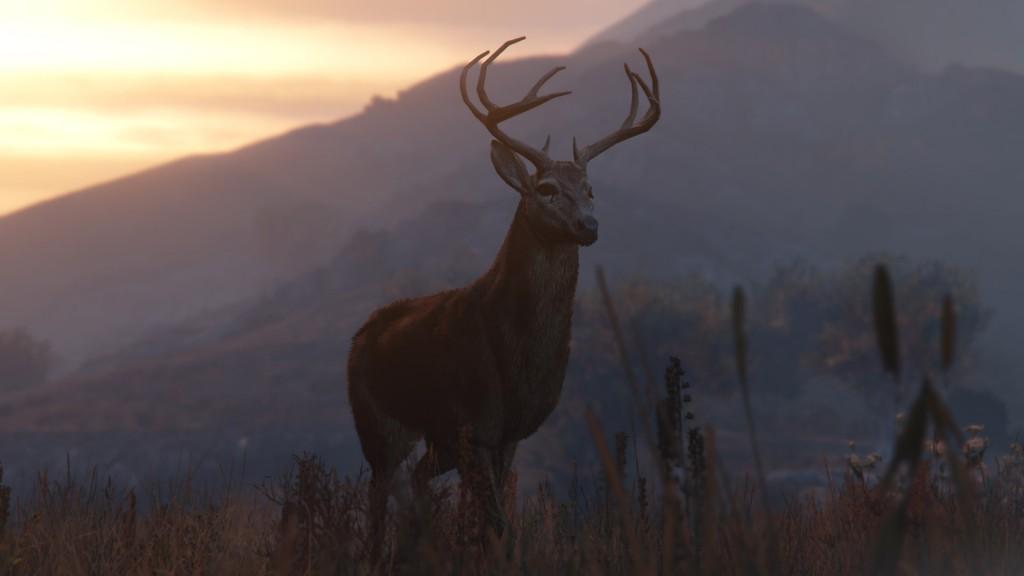 GTAV Deer